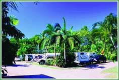 Tropical Hibiscus Caravan Park - Southport Accommodation