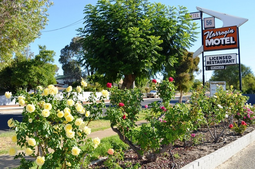 Narrogin Motel - Southport Accommodation