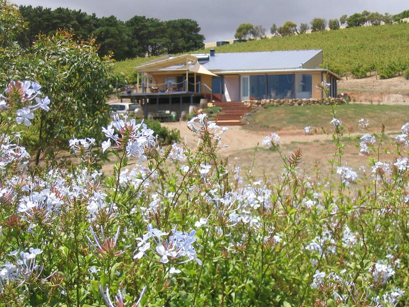 The Blue Grape Vineyard Accommodation - Southport Accommodation