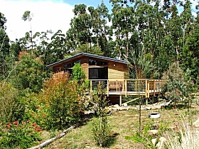 Southern Forest Accommodation - Southport Accommodation