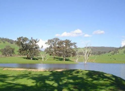 Hillview Farmstay - Southport Accommodation
