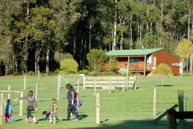 Diamond Forest Farm Stay - Southport Accommodation