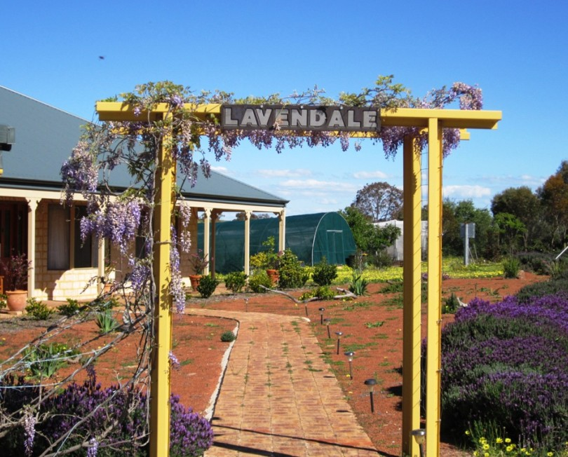 Lavendale Farmstay and Cottages - Southport Accommodation