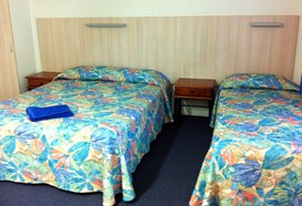 Mango Tree Motel - Southport Accommodation