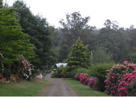 Mountain Rivers Lodge - Southport Accommodation