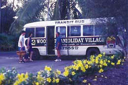 BIG4 Townsville Woodlands Holiday Park - Southport Accommodation