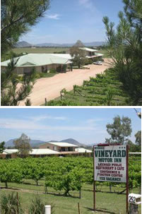Mudgee Vineyard Motor Inn - Southport Accommodation