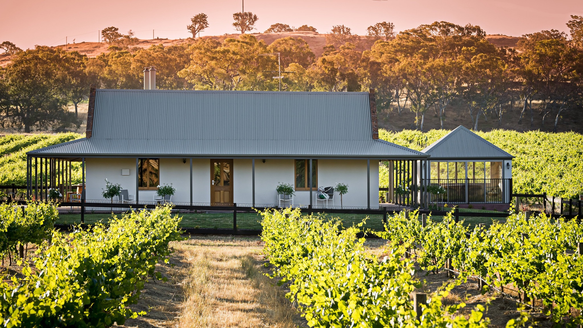 Brockenchack Vineyard Bed  Breakfast - Southport Accommodation