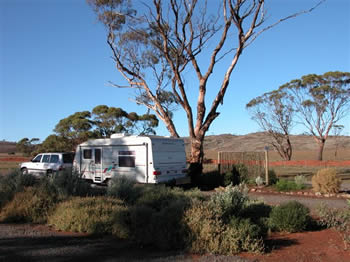 Fraser Range Sheep Station - Southport Accommodation