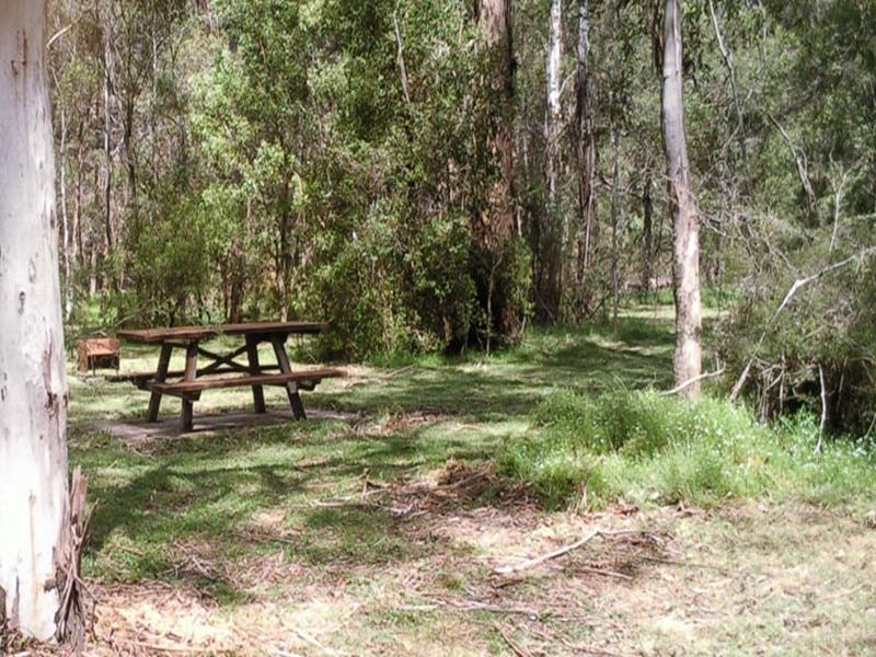 Mulloon Creek campground - Southport Accommodation
