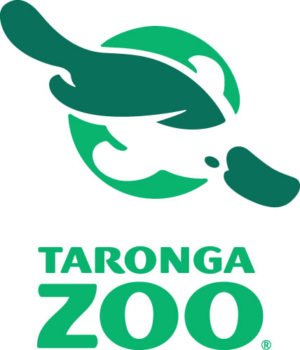 Taronga Zoo - Southport Accommodation
