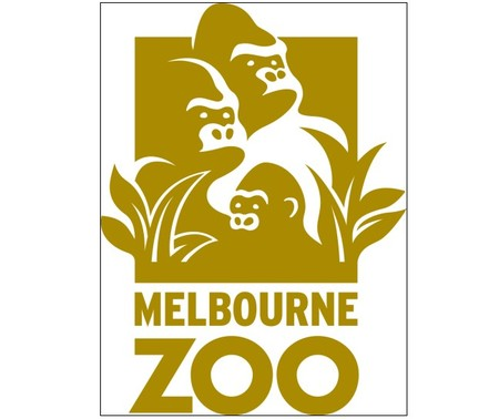 Melbourne Zoo - Southport Accommodation