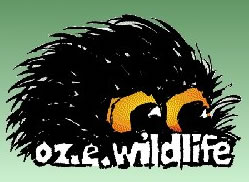 OZe Wildlife - Southport Accommodation