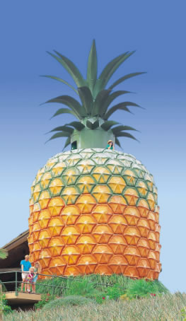The Big Pineapple - Southport Accommodation