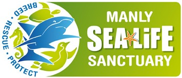Manly SEA LIFE Sanctuary - Southport Accommodation