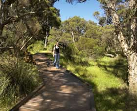 Leschenault Peninsula Conservation Park - Southport Accommodation