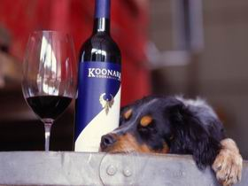 Koonara Wines - Southport Accommodation