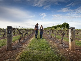Coonawarra Wineries Walking Trail - Southport Accommodation