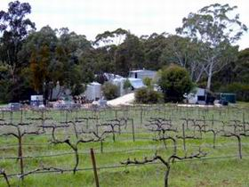 Jeanneret Wines - Southport Accommodation