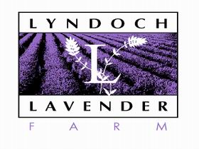 Lyndoch Lavender Farm and Cafe - Southport Accommodation