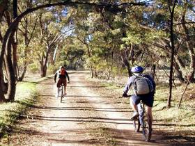 Bike About Mountain Bike Tours And Hire - Southport Accommodation