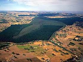 Mount Crawford Forest Reserve - Southport Accommodation