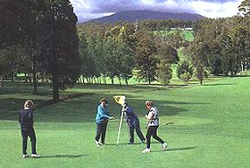 Deloraine Golf Course - Southport Accommodation