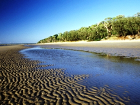 Burrum Coast National Park - Southport Accommodation