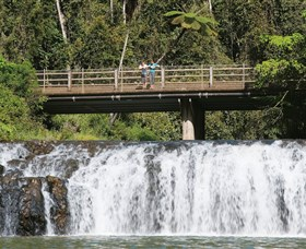 Malanda Falls Conservation Park - Southport Accommodation