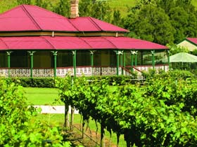 OReillys Canungra Valley Vineyards - Southport Accommodation