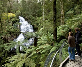 Great Otway National Park - Southport Accommodation
