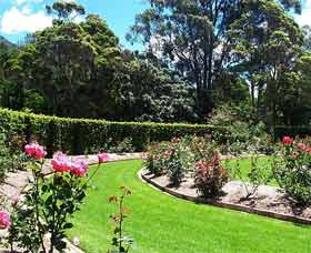 Wollongong Botanic Garden - Southport Accommodation