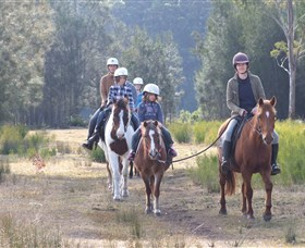 Horse Riding at Oaks Ranch and Country Club - Southport Accommodation