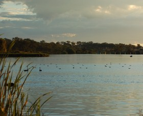 Lake Inverell Reserve - Southport Accommodation