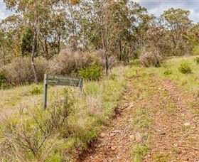 Old Mountain Road Walking Track - Southport Accommodation