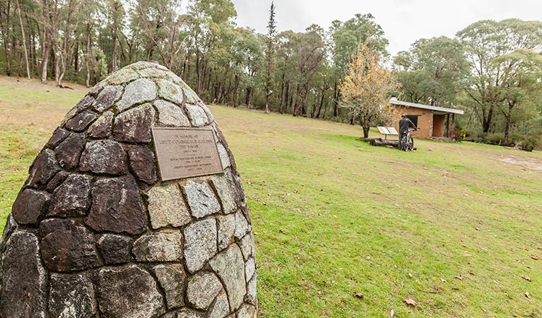 Major Clews Hut walking track - Southport Accommodation
