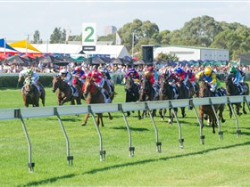 Morphettville Racecourse - Southport Accommodation
