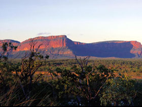 Blackdown Tableland National Park - Southport Accommodation