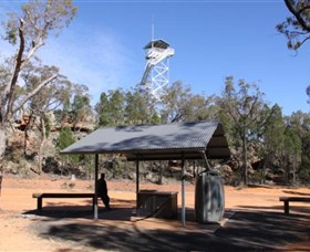 Pilliga Forest Lookout Tower - Southport Accommodation