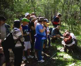 Warrumbungle National Park Discovery Program - Southport Accommodation