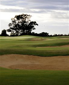 Black Bull Golf Club - Southport Accommodation