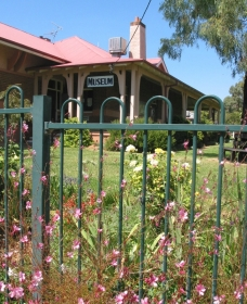 Dunedoo Local Museum - Southport Accommodation