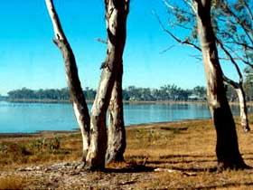 Lake Broadwater Conservation Park - Southport Accommodation