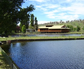 Gaden Trout Hatchery - Southport Accommodation