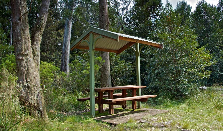 Devils Hole lookout walk and picnic area - Southport Accommodation