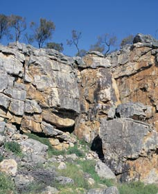 Badgingarra Nature Trail - Southport Accommodation