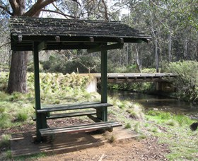 Barrington Tops State Forest - Southport Accommodation