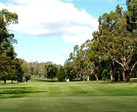 Cooma Golf Club - Southport Accommodation