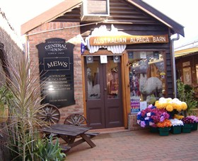 Australian Alpaca Barn - Morpeth - Southport Accommodation