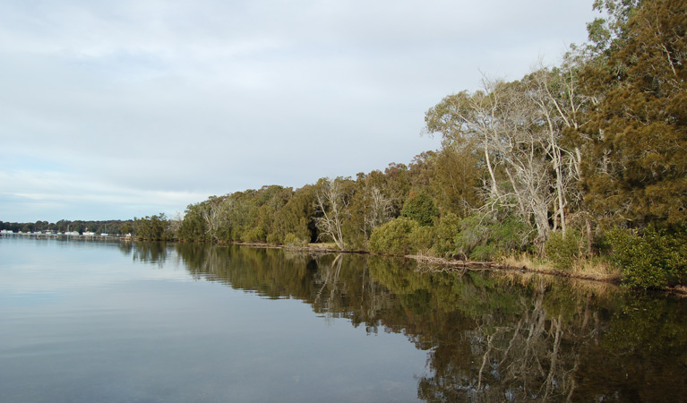 Lake Macquarie State Conservation Area - Southport Accommodation